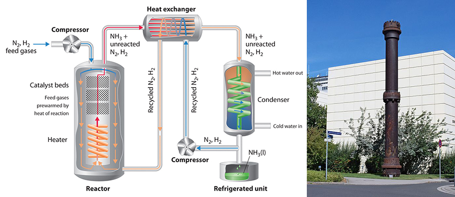 Haber-Bosc Reactor